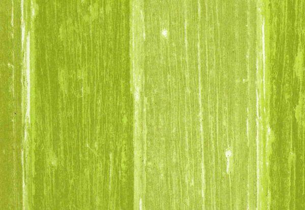 Woody-grün-Nr.g365.jpg