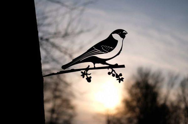 Baumstecker Glücksvogel Dompfaff