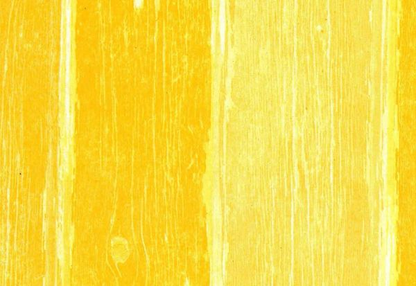 ANGEBOTSPAPIER Blumenseidenpapier Woody gelb 75 cm -6kg-