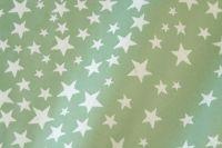 Blumenpapier  Sternenzelt salbei 75cm