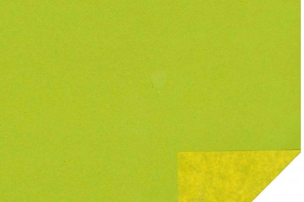 Bicolor-maigrün_gelb-Nr.g06.jpg