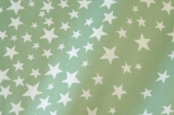 Blumenpapier Sternenzelt salbei 50cm